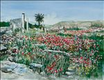 Poppies at Delos